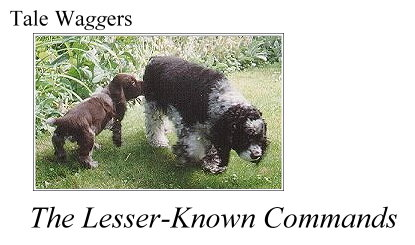 Title: Tale Waggers - The Lesser Known Commands  Photo:  Duncan & Arthur