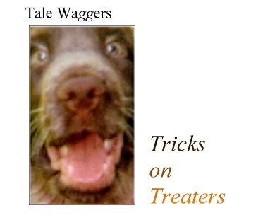 Title:  Tale Waggers - Trick on Treaters  Graphic:  Photo of Dog Face